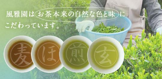 風雅園はお茶本来の味と色にこだわっています
